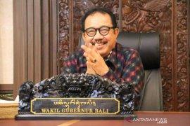Cok Ace: gunakan pandemi COVID-19 untuk cari solusi keberlangsungan budaya Bali