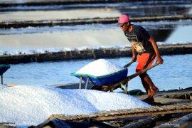 Kemarin, Presiden izinkan impor langsung  garam industri hingga padat karya