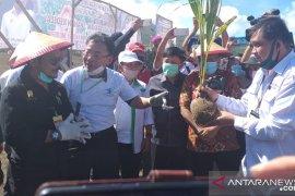 Mentan Syahrul Yasin Limpo  galakkan kawasan korporasi perkuat sektor pertanian