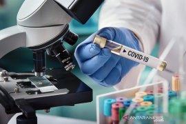 Menteri  Erick: Harga vaksin COVID-19 tergantung penjual