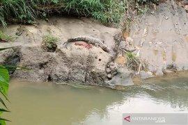 Bikin heboh, seekor buaya nampakan diri saat warga beraktifitas di sungai