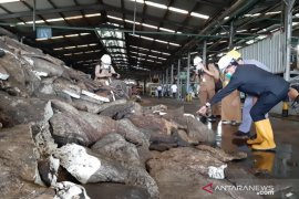 Neraca perdagangan Kalbar pada Juli 2020 surplus 36,70 juta USD