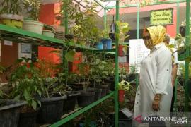 Dinas Pendidikan Kota Tangerang libatkan sekolah programkan ketahanan pangan