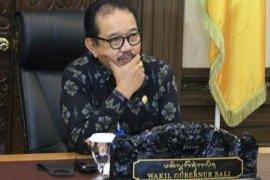 Pemprov Bali dukung industri kreatif di tengah pandemi COVID-19