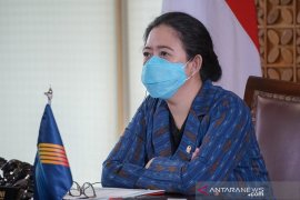 Puan meminta pemerintah pusat dan daerah perkuat koordinasi atasi sebaran COVID-19
