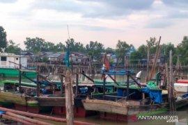 Nelayan di Tanjabbar mengeluhkan tutupnya penampungan udang belalang