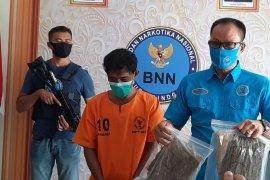 BNNK Badung ringkus bandar ganja jaringan Medan