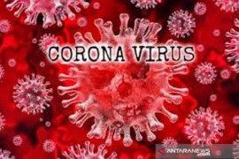 Kamerun mengklaim sukses melawan virus corona