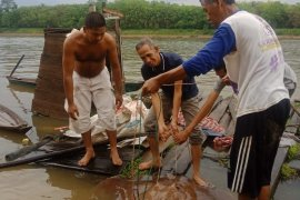 Musi Banyuasin dorong masyarakat peduli dan jaga biota sungai
