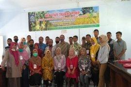 Staf Lapangan Dari 4 Kabupaten Ikut Pelatihan IPDMIP