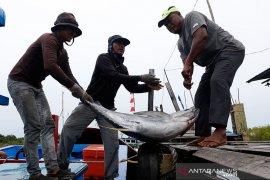 Isu kemarin, larangan ekspor ikan ke China hingga aturan keselamatan pegowes