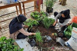 UMM students develops HSS's Sungai Raya Selatan into a vegetable village