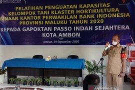 Kelompok Tani di Kota Ambon diharapkan bisa mandiri