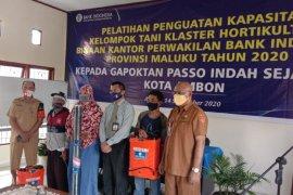 BI: Produktivitas petani Maluku butuh dukungan provinsi lain