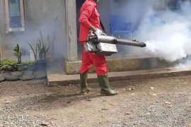 Ratusan warga Mukomuko positif DBD