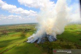 Kebakaran Hutan dan Lahan di Kalsel