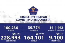 Positif COVID-19 di Indonesia bertambah 3.963, total jadi 228.993 kasus