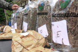 Dua kurir narkotika segera masuk persidangan, berkas perkara ganja 6,68 kg jaringan lapas lengkap