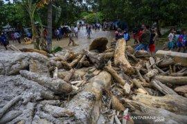Tumpukan kayu timbun jalan akibat banjir bandang di Sigi Page 1 Small