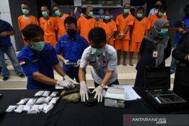 Pengungkapan kasus narkoba oleh BNN Sulteng Page 1 Small