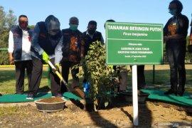 Gubernur: Perlunya sinkronisasi RDKK untuk mengatasi kelangkaan pupuk