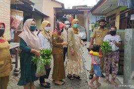 Wali Kota Tangerang apresiasi budidaya pangan di area kantor kelurahan
