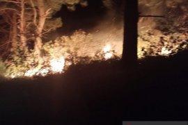 Dua hektare lahan terbakar di Bener Meriah