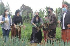 Ketua PKK Bali ajak Petani Tabanan budidayakan sayuran lokal