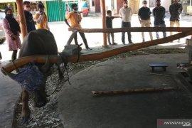 Penggilingan tebu menggunakan tenaga kerbau masih lestari di Nagari Lawang Agam (Video)