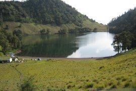 Pemkab Lumajang  dukung pendakian Gunung Semeru dibuka kembali