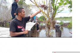 BFS Bangka pasang barcode di 227 tanaman anggrek