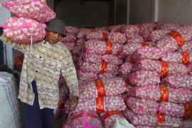 KPPU mendukung pengusutan dugaan persaingan tak sehat impor bawang putih