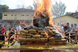 Pemusnahan Narkotika Di Aceh Page 1 Small