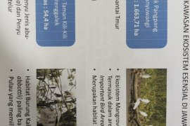 Legislator : pemanfaatan dan fungsi hutan jatim bisa menjadi contoh Kalsel