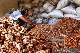 Harga Kakao Di Madiun Naik Page 1 Small