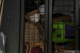 Anggota DPRD Palembang ditangkap BNN ternyata residivis