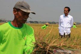 Presiden Jokowi minta K/L jalankan strategi terintegrasi bangun ekonomi desa