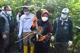 Jurus Wali Kota Risma hadang resesi ekenomi di tengah pandemi COVID-19