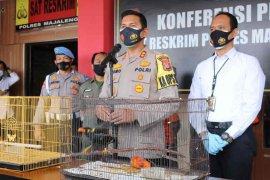 Polisi Majalengka tangkap penjual satwa dilindungi
