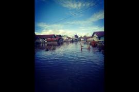Banjir danau Sentarum meluas, 216 rumah penduduk terendam