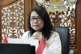Pemerintah pastikan akan usut tuntas insiden penembakan di Distrik Hitadipa