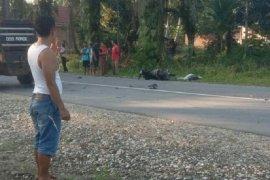 Pengendara motor tewas setelah tertabrak truk pengangkut paket