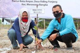Pemkab Bangka tetapkan pantai Batu Ampar area Ekowisata Mangrov