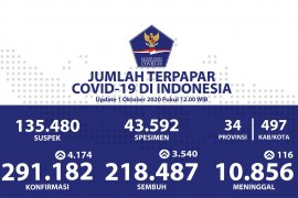 Indonesia's COVID-19 cases climb by 4,174 to 291,182