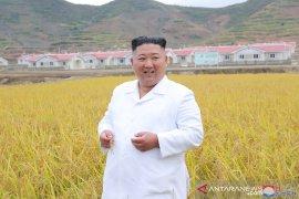 Kim Jong Un memerintahkan pengetatan sistem darurat anti COVID-19