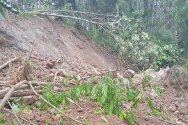 Pemulihan kelistrikan di lokasi longsor Cianjur terkendala cuaca