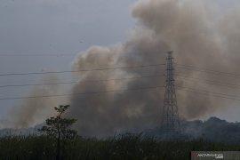 Kebakaran Lahan Di Tanjung Barangan Page 2 Small