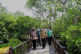 Pemenang Scroll of Honour Award 2020 kagumi keindahan mangrove Surabaya