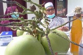 Bupati Aceh Barat bagikan tips sembuh dari COVID-19, rutin minum kelapa muda