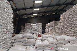 Bulog siap bangun gudang beras premium di Garut untuk kebutuhan nasional